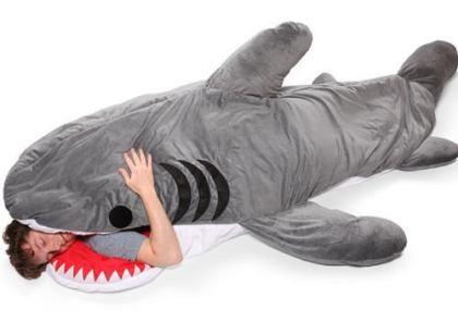 「素晴らしいクリーンヒットだった」 … 元ボクサー(25)がサーフィン中にサメに襲われる → サメの背中に乗り、サメに8発ほど得意のパンチを浴びせ撃退 - ハワイ