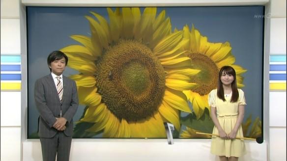【画像あり】気象予報士・岡村真美子さん(30)がスカートが捲れないように左手で必死に押さえててえろいwwwwwwwwwww