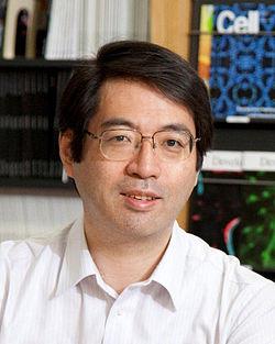 【悲報】笹井芳樹氏が死んで日本の細胞学死亡確実wwwwwwwwwwwww【STAP細胞】