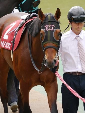 【競馬】 中山ダート戦で1ハロン16秒ww 逃げ馬が歩いてると話題に