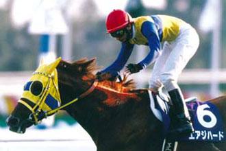 【競馬】 かなり強いのに、いまいち話題に上がらない馬といえば?