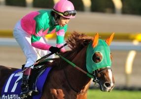 【競馬】 ヴェルデグリーンが腸閉塞で急死… 癌が全身に転移していた模様