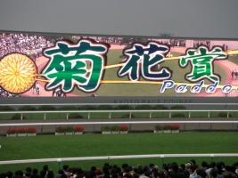 【競馬】 今年の菊花賞は乱菊となるか?