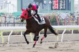 【競馬】 「ヤナギムシ」よりひどい馬名を挙げてけ