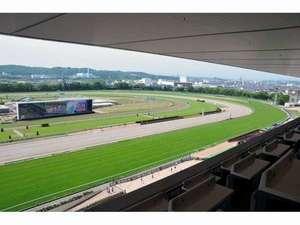 【競馬】 なんで日本は欧州を崇拝しといて、馬場は高速という真逆なことしてんの?
