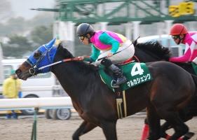 【競馬】 福永騎手「僕の乗った中で一番良い馬はマルカシェンク」