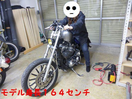 P1030797.jpg