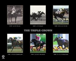 【競馬】 もしも、牡馬三冠馬7頭がが同世代だったら…