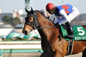 【競馬】 ダッシャーゴーゴーが引退、乗馬へ
