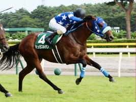 【競馬】 新潟記念16着のミュゼスルタンが骨折… 全治3か月