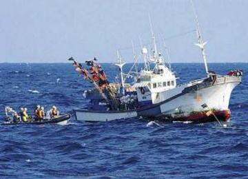 韓国海洋水産部「韓国漁船が日本のEEZ水域内でやっている違法操業への無理な取り締まりをやめろ」 … 日韓漁業指導取締実務協議にて、斜め上の自制を日本に要求