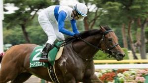 【競馬】 ロードクエスト、池添騎手と新コンビ! ダービーまで見据えての騎乗依頼