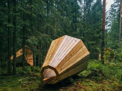 【画像】 エストニアの森に謎の巨大メガホンが出現!!?