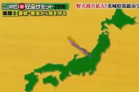 フジテレビ「確認不足により不適切な日本地図を引用してしまいました。お詫び申し上げます」 … 四国の部分がオーストラリアになっている、とネット上で指摘され話題に(画像)