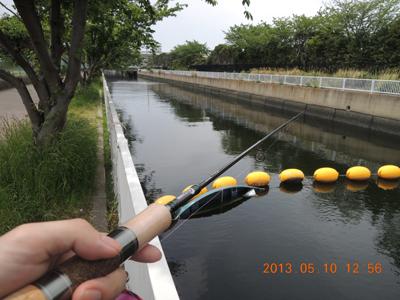 バイク釣行 海釣り & 管釣り