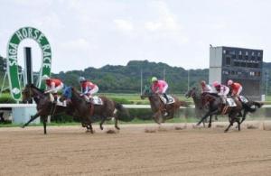 【競馬】 佐賀競馬で1着馬から禁止薬物・カフェイン検出