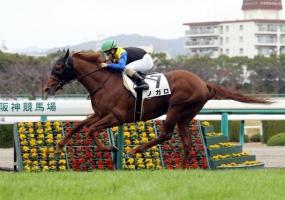 【若葉S】 ノガロ陣営「松若ではこの馬を動かし切れない。戸崎なら皐月賞の権利(2着以内)は取れる」