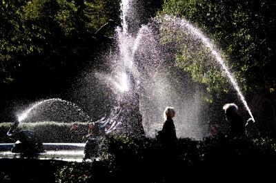 トレビーノの浄水力は異常。だがミネラルウォーターには負けてる気がする。