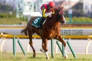 【競馬】 メジャーエンブレム、競走能力喪失で引退