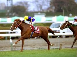 【競馬】 「GⅠではワンパンチ足りなかった」と聞いて真っ先に思い浮かぶ馬は?