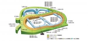 【競馬】 中山芝4000m戦(OP)をやったら勝ちそうな現役馬