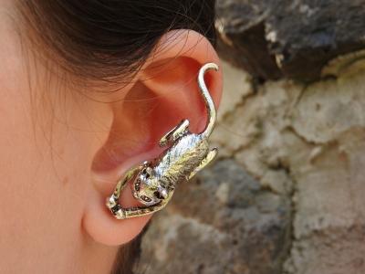 なぜイヤホンは耳奥突っ込み型ばかりになったのか?あれが本当に嫌。