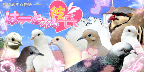 heartfulkareshi_image_title.jpg