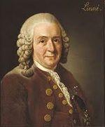 10 Linnaeus