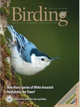 Birding cover