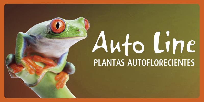 _autoline