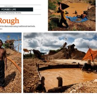 Tear Sheets : In the Rough
