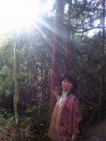 江の島の花と奥日光.jpg