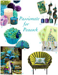 Passionate for Peacock