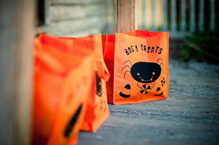 Halloween Inspiration Trick or Treat Bags