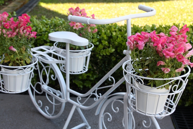 Bicycle for Flower Stand Dessert Table