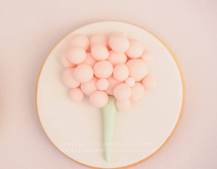 Cotton Candy Sugar Cookie Pretty Peach & Green Circus Guest Dessert Feature