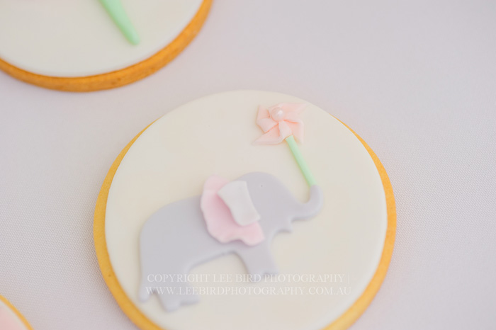 Elephant Sugar Cookie1 Pretty Peach & Green Circus Guest Dessert Feature