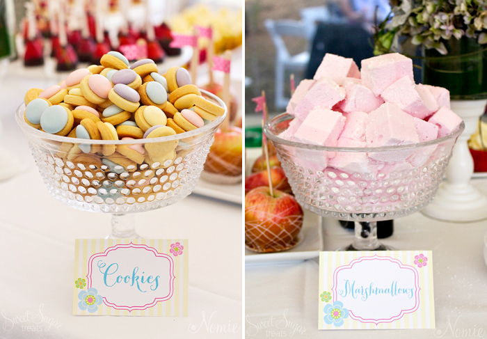Owl Themed Dessert Table | Pastel Sugar Cookies and Marshmallows