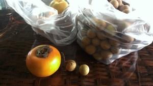 柿とロンカン
