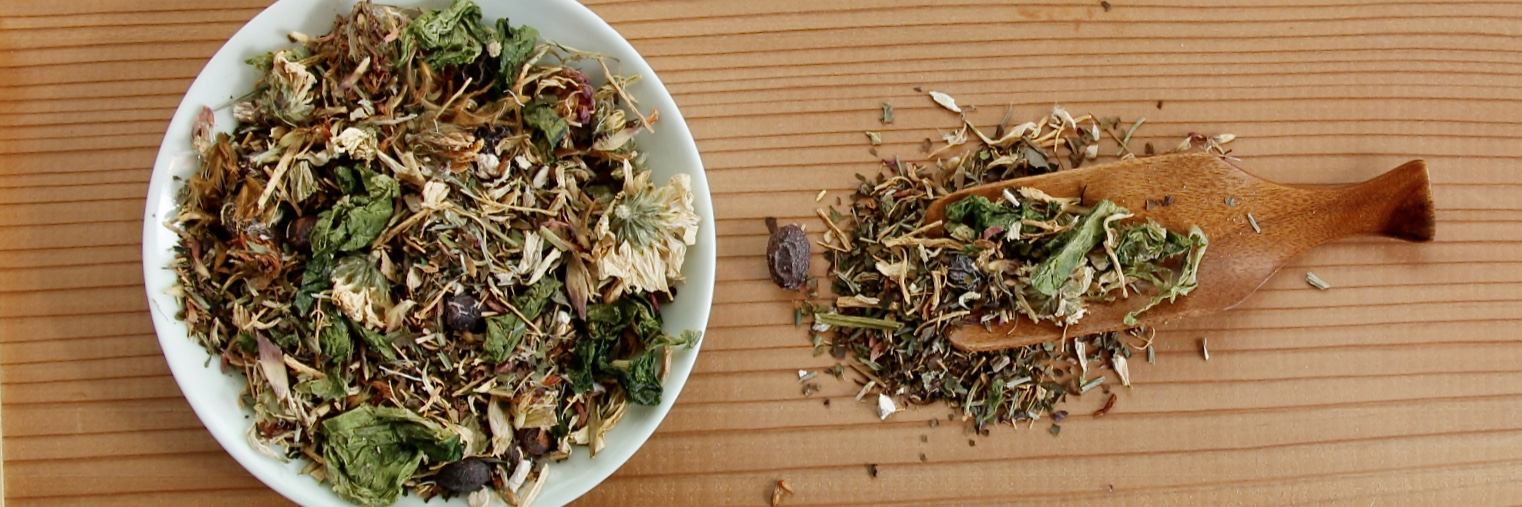 Herbs for Lyme Disease