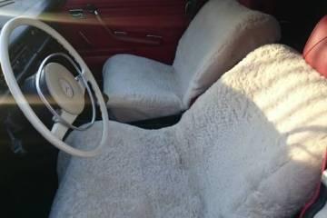 Mercedes 220 interior