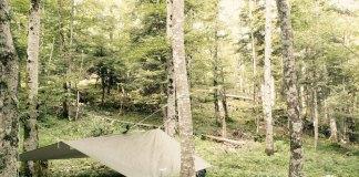 Tente survie forêt