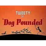 Dog Pounded