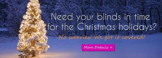 Get Blinds Delivered by Christmas! Order by 12/9!
