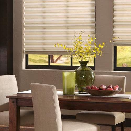 Blinds.com Brand Signature Roman Pleated Shade