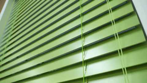 Bright Green Blinds from Blinds.com