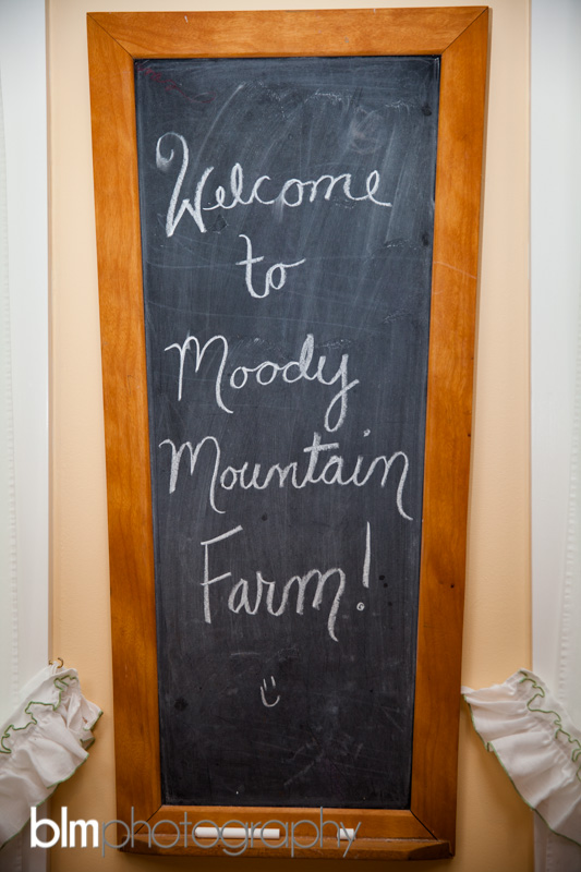 003_Brittany-Chris-Moody-Mountain-Farm-Wedding