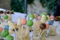 Hochzeitsfotograf | Cupcakes - Cake-Pops