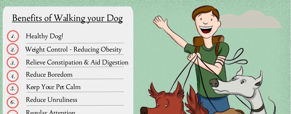 dog_walking_HP