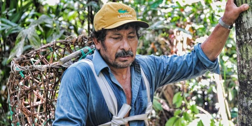 Brazil nut harvester. Photo by Richard Vignola